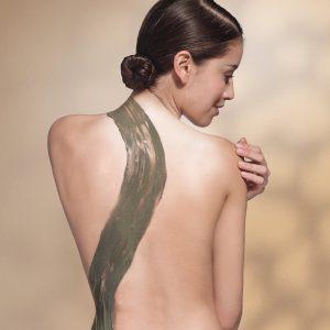 THALGO_Algae-Treatment-Visual